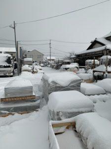 雪、降りました、降っております・・・サムネイル